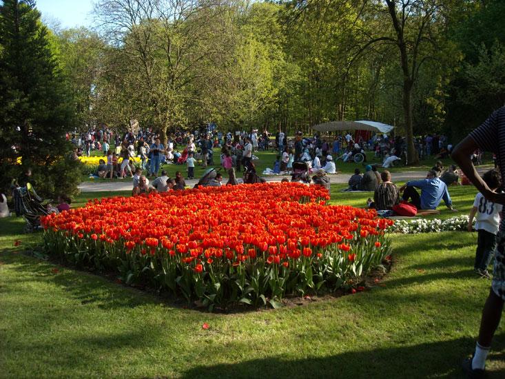 La fête des tulipes